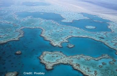 Great Barrier Reef, Pollution, Ecosystem, Australia