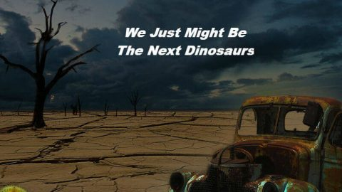 Extinction, Global warming, mass extinction, Insect mass extinction, climate change