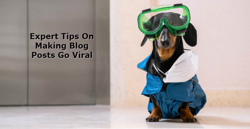 how to go viral, viral post, blog post, go viral, going viral