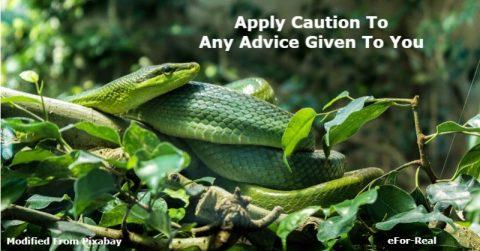 advice giving advice, bad advice, giving bad advice,