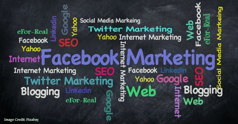 Social media marketing, SEO techniques, Search engine optimization, Website traffic