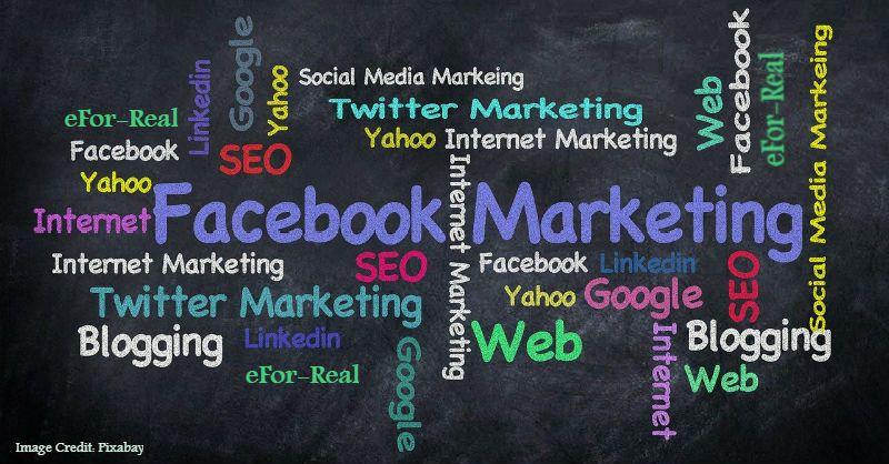 Social media marketing, SEO techniques, Search engine optimization, Website traffic