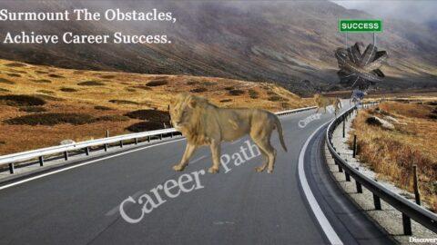 career path, how to choose a career path, path to a successful career, career path to success